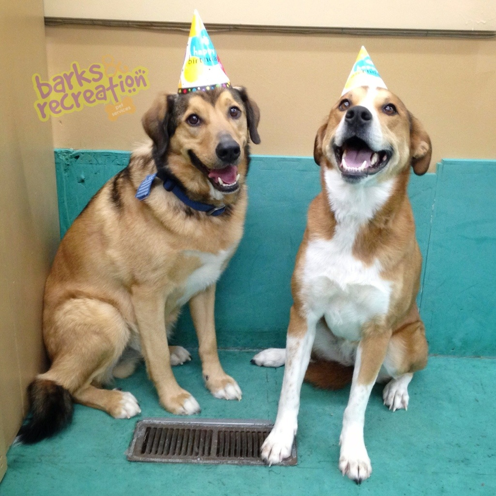Hurley and Dyna's Birthday!