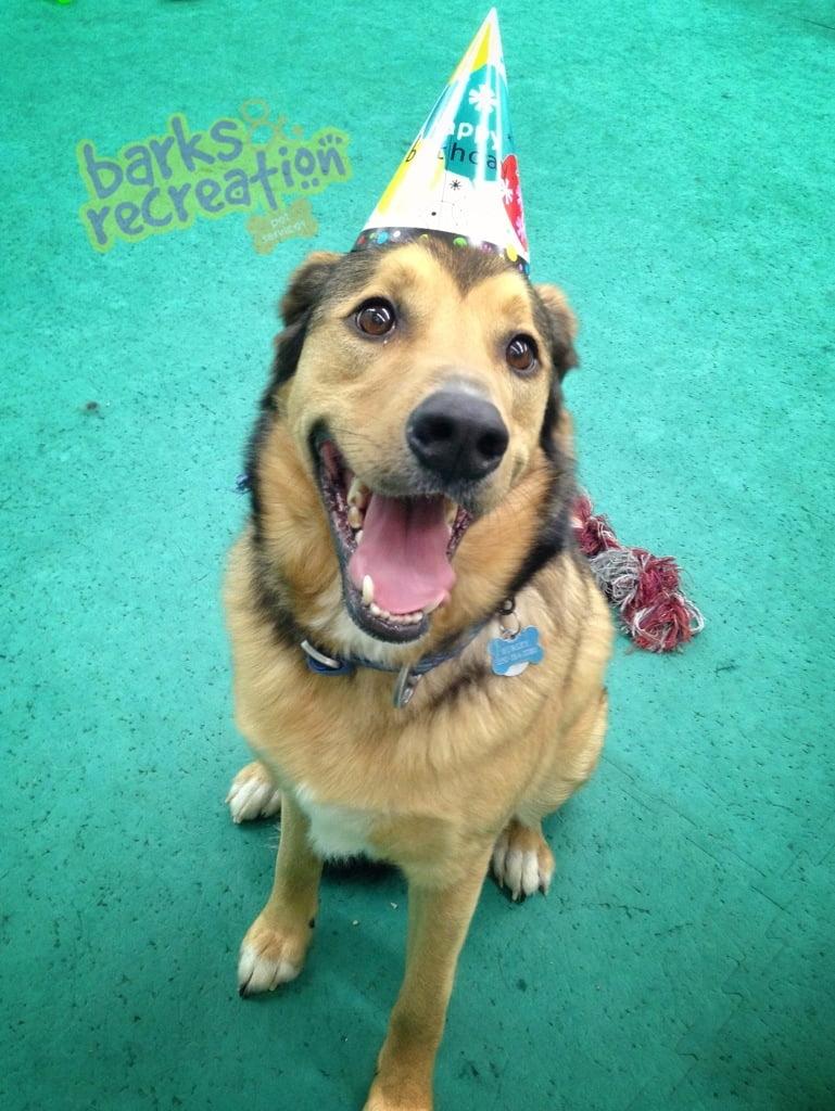 Happy Hurley!