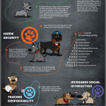 38 Benefits of Owning A Dog Infographic