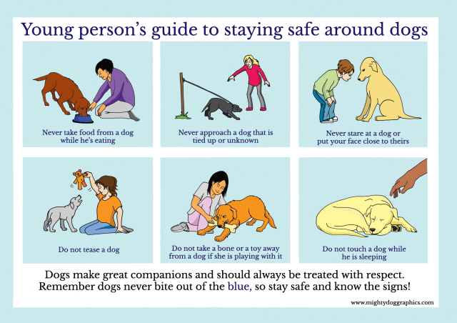 A Young Persons Guide to Staying Safe Around Dogs