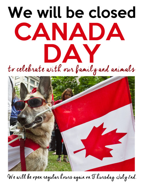Canada Day Hours Barks and Recreation Pet Services in Trail, BC