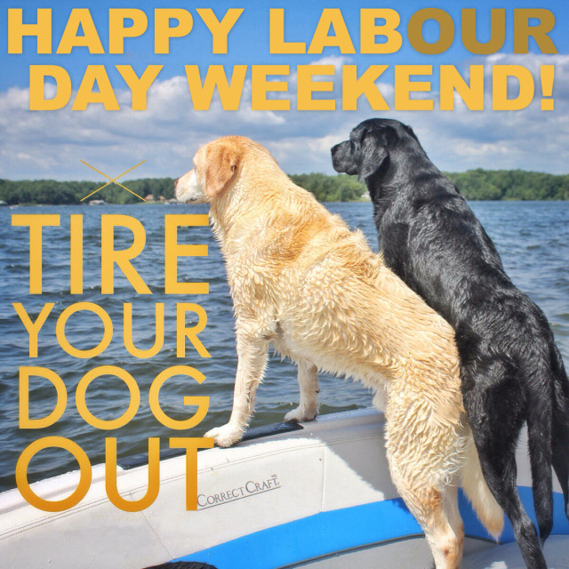 barks-and-recreation-in-trail-bc-Labour-Day-Web copy