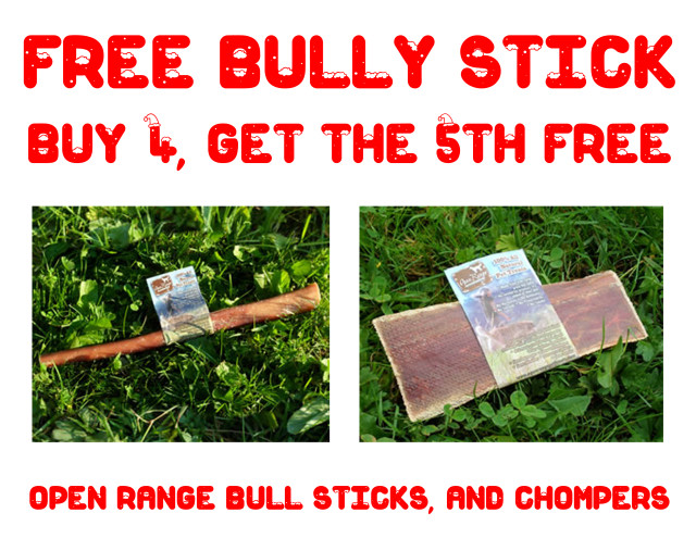 Buy 4 get one free bully stick