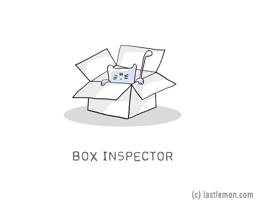 Lastlemon.com Cat Job: Box Inspector