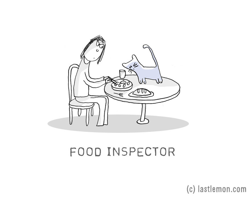 Lastlemon.com Cat Job: Food Inspector