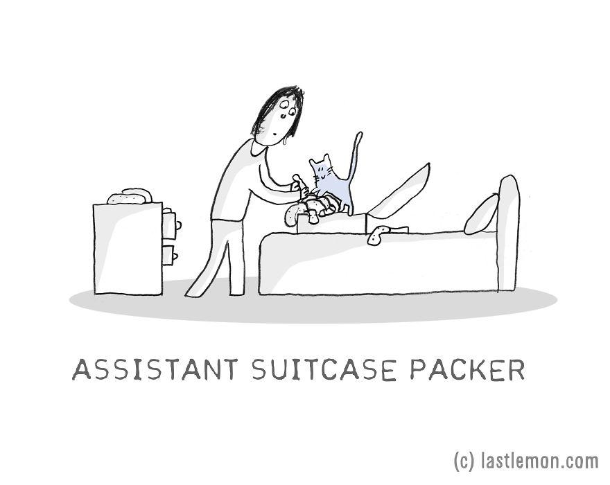 Lastlemon.com Cat Job: Assistant Suitcase Packer