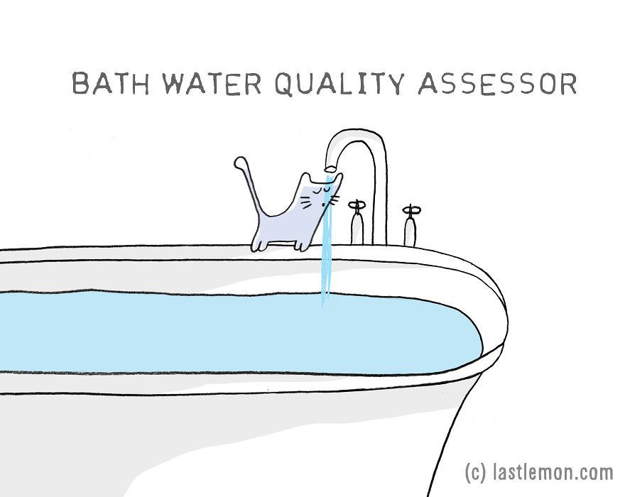Lastlemon.com Cat Job: Bath Water Quality Assesor