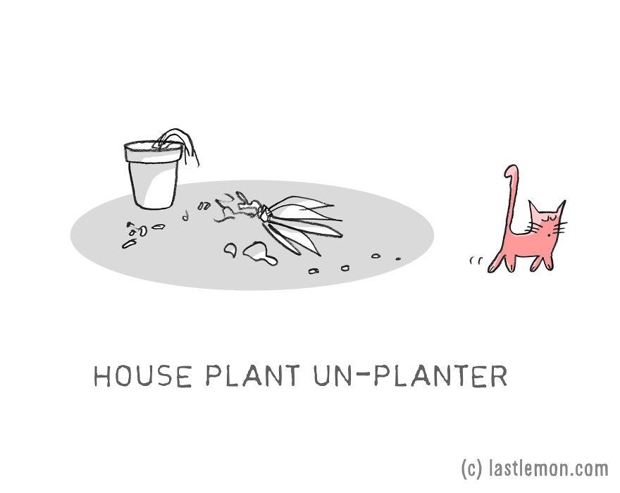 Lastlemon.com Cat Job: House Plant Un-Planter