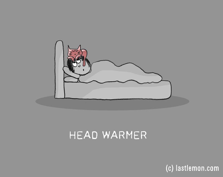 Lastlemon.com Cat Job: Head Warmer