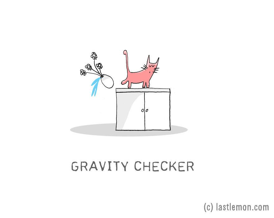 Lastlemon.com Cat Job: Gravity Inspector