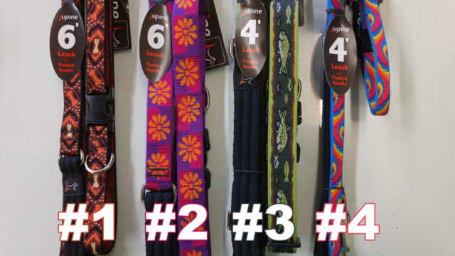 lupine_collar_leash_contest_barks_and_recreation