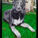 Pet Portrait Painting - Shanna Finished