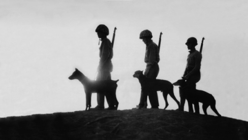 Dogs and Soldiers Remembrance Day
