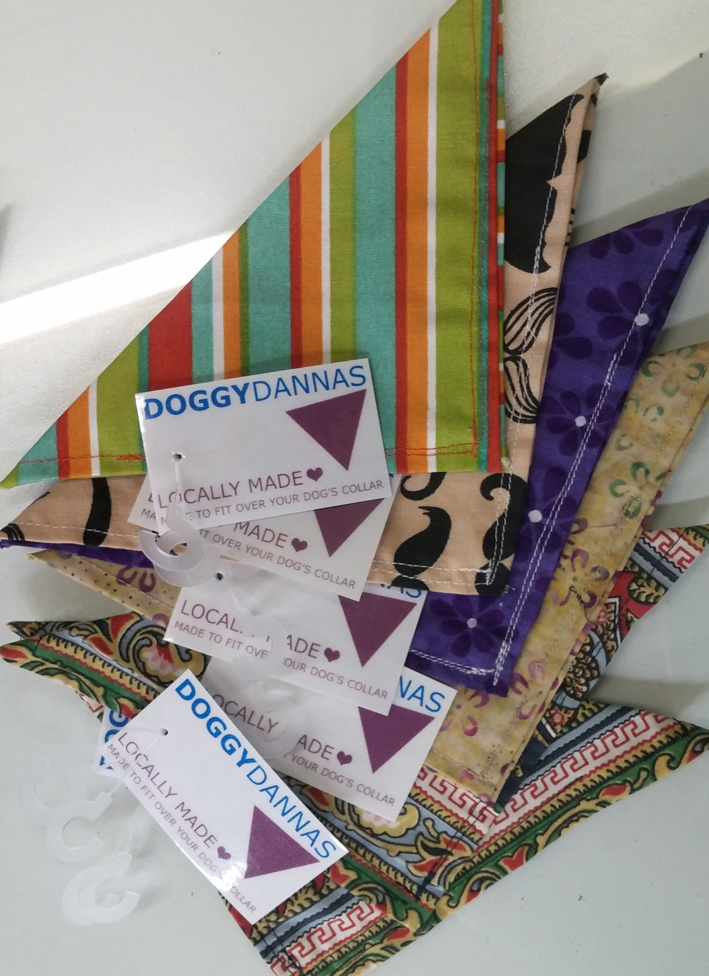 Doggydannas at Barks and Recreation in Trail BC