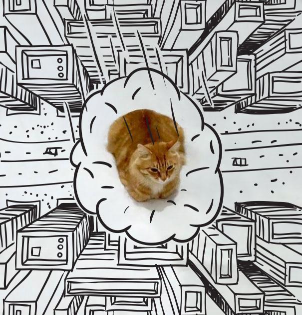 cat-doodle