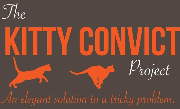 kitty-convict-orange-cat-collar