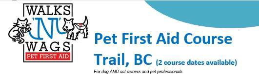 pet-first-aid-course-banner-barks-and-rec-in-trail-bc