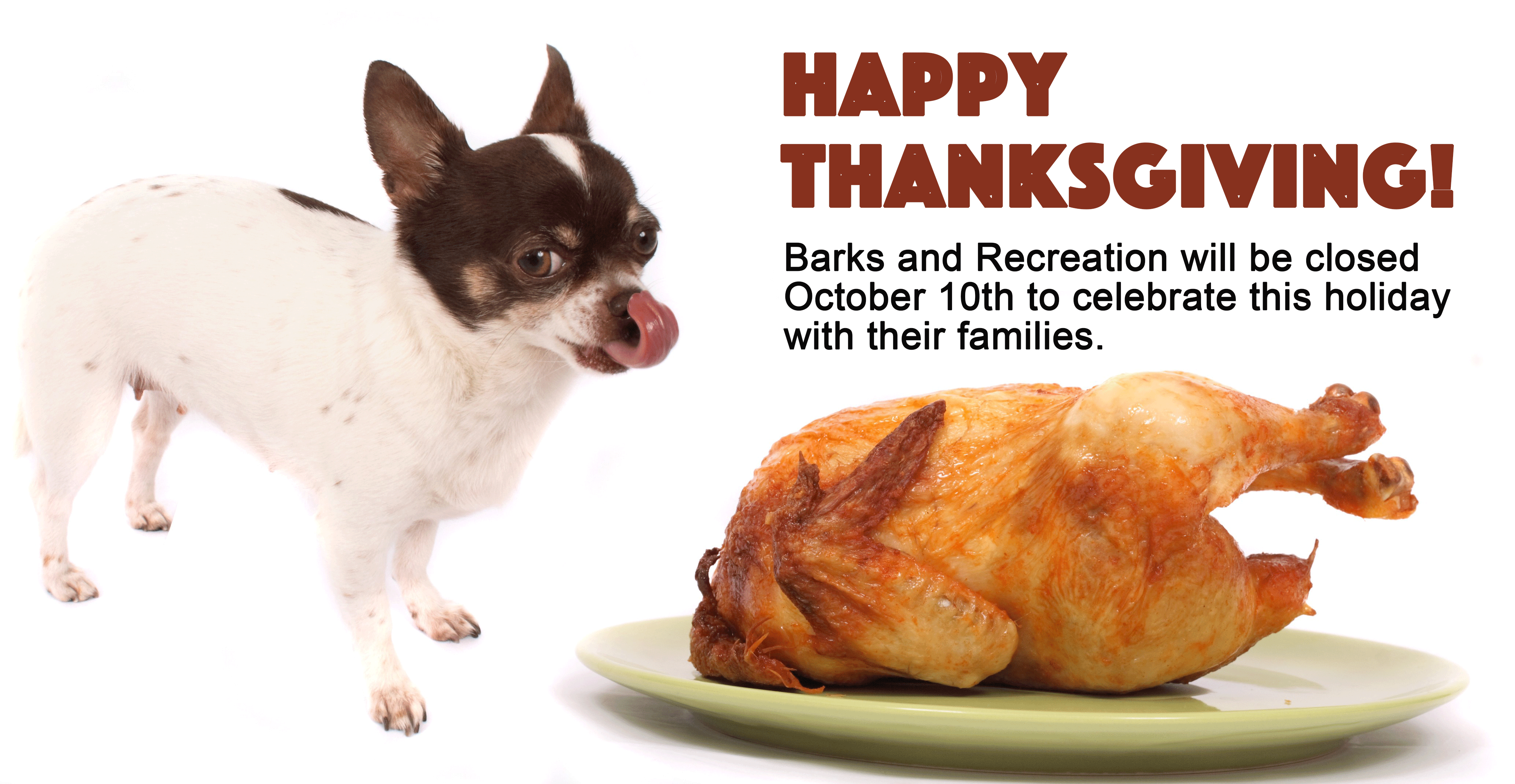 barks-and-reacreation-in-trail-bc-thanksgiving-hours-2016